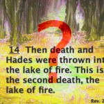 The second death (Rev. 21:8; Rev. 20:12-14)